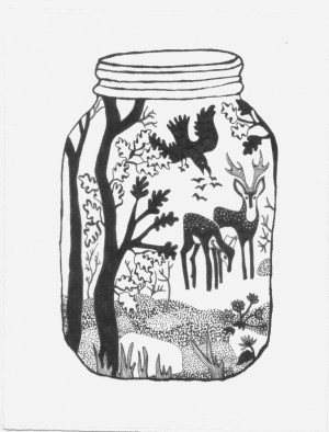 Dai Due Deer in Jar illustration by Annie Taylor