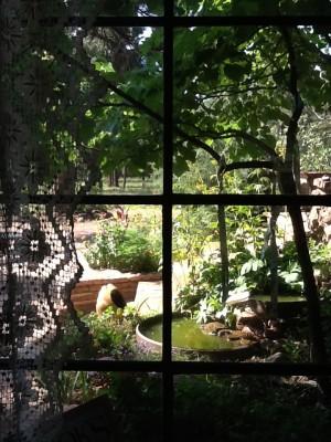 Fresh Configurations Longridge Lookbook Breakfast Nook Window