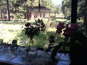 Fresh Configurations Longridge Lookbook Bud Vases on Kitchen Windowsill