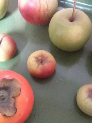 Fresh Configurations Longridge Lookbook Penkridge Ceramic Apples on Christine Perchon Tray