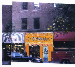 Street Shop on Lexington Avenue for Annie's Omnium illustrated by Annie Taylor